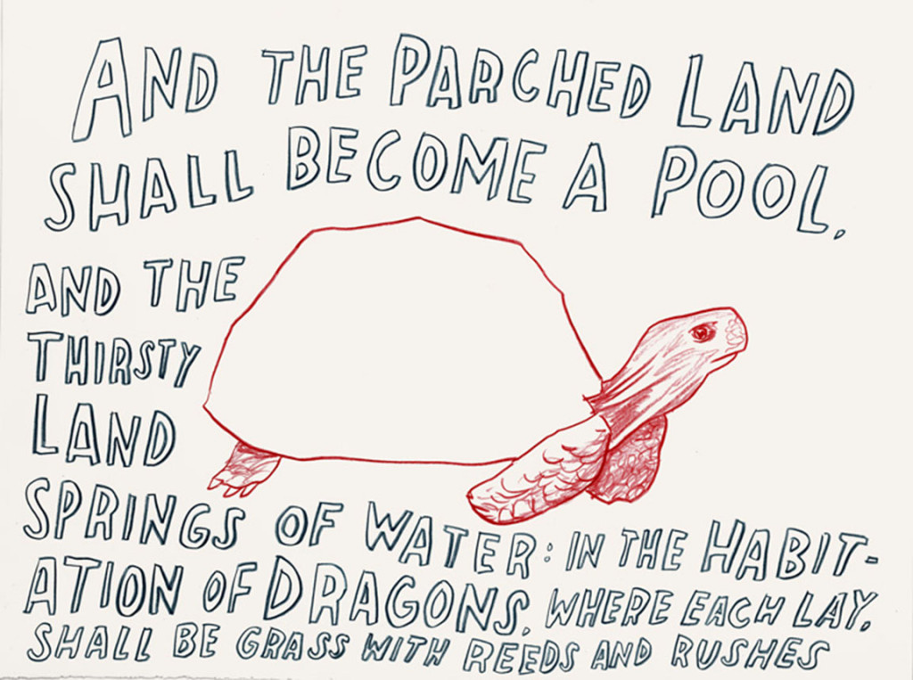 "Dave Eggers - ""And the Parched Land Shall Become a Pool"""