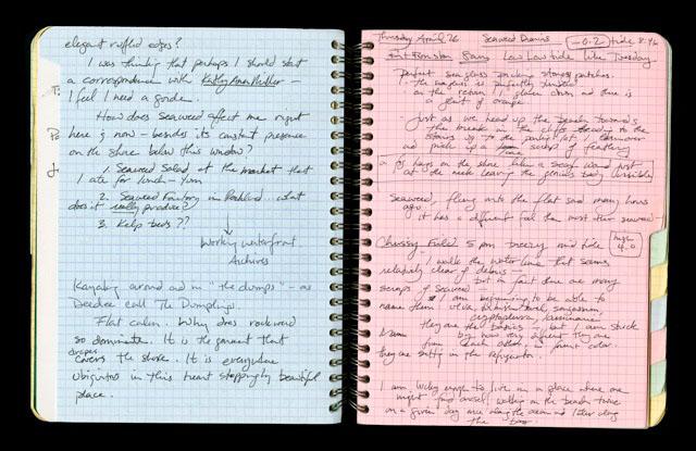 Josie Iselin - Open Notebook 4