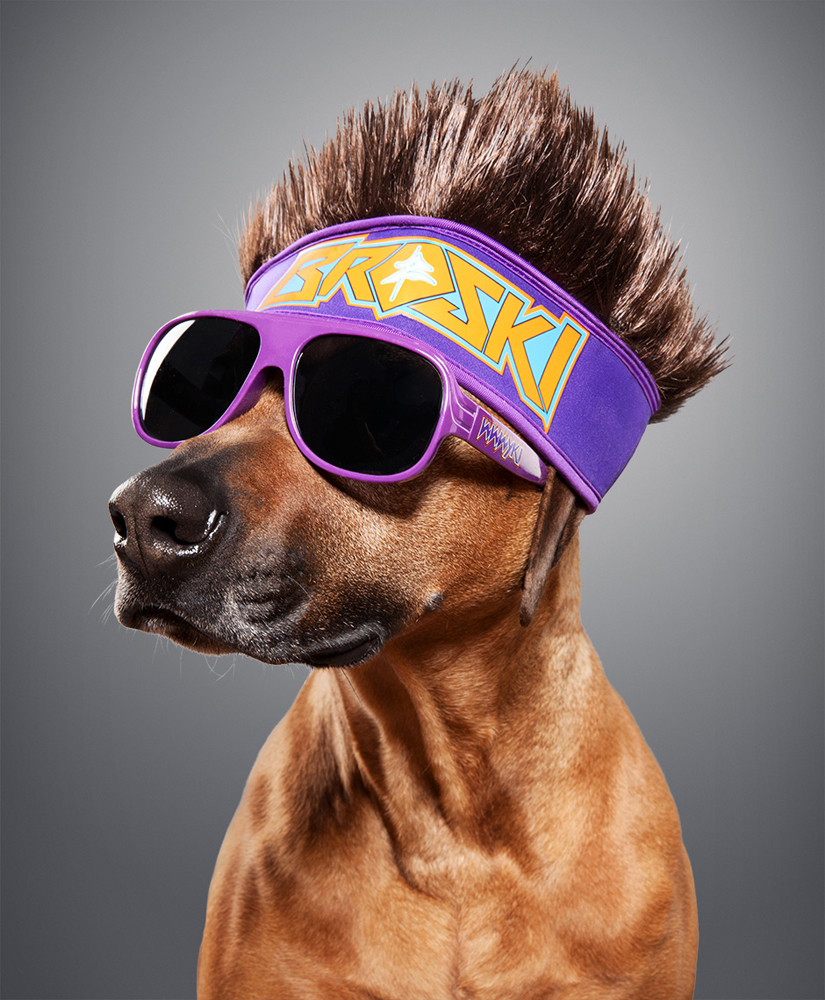 wwe_dogs_unleashed_01_F