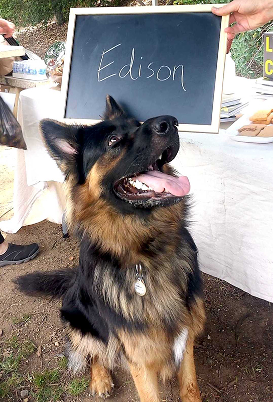 Edison LICK Photoshoot