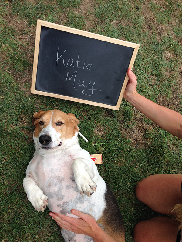 Katie May LICK Photoshoot